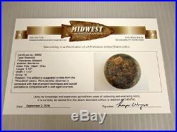 Fine Made Colorful Missouri Dicoidal with COA Arrowheads Artifacts